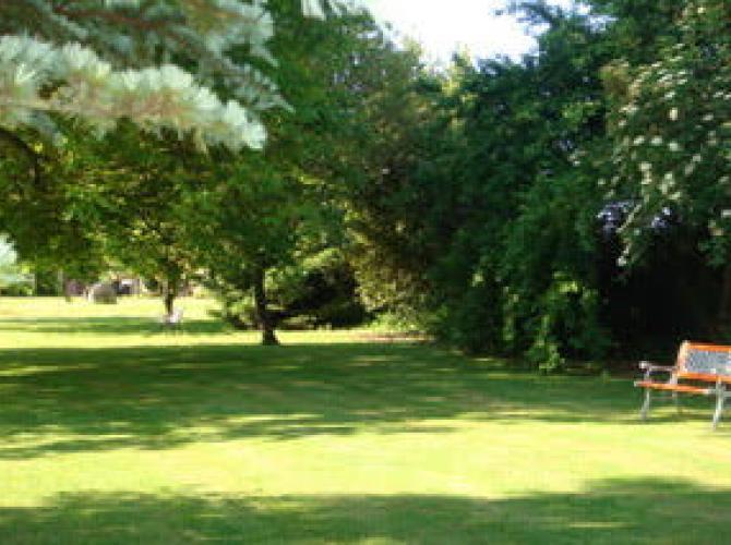 immense parc de verdure