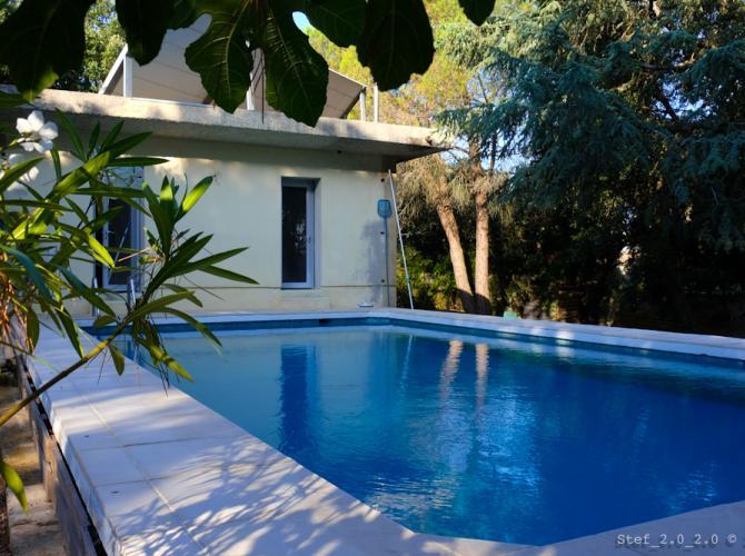 Grande piscine de 10x5 m dans un écrin de verdure