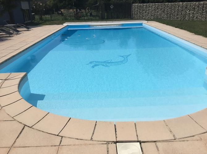 Très grande piscine dans le Gers