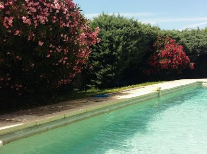 Belle piscine ombragée